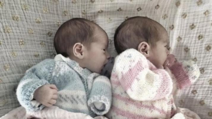 paleta twins