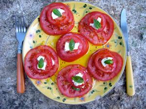 Tomaten in de Provence