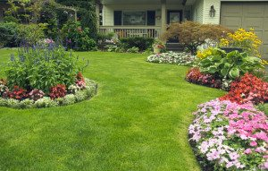 Landscape Maintenance , Lawn Maintenance in Pinecrest