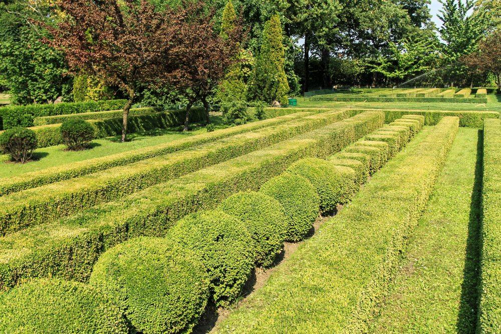 Best Quality Landscape Maintenance