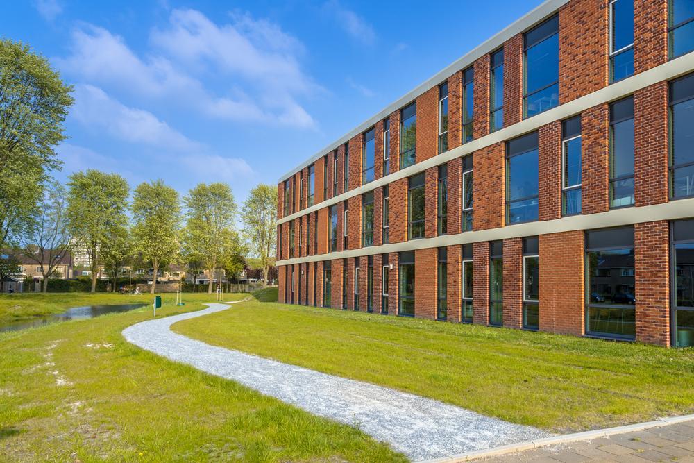 Explore The Importance Of Regular Lawn Maintenance