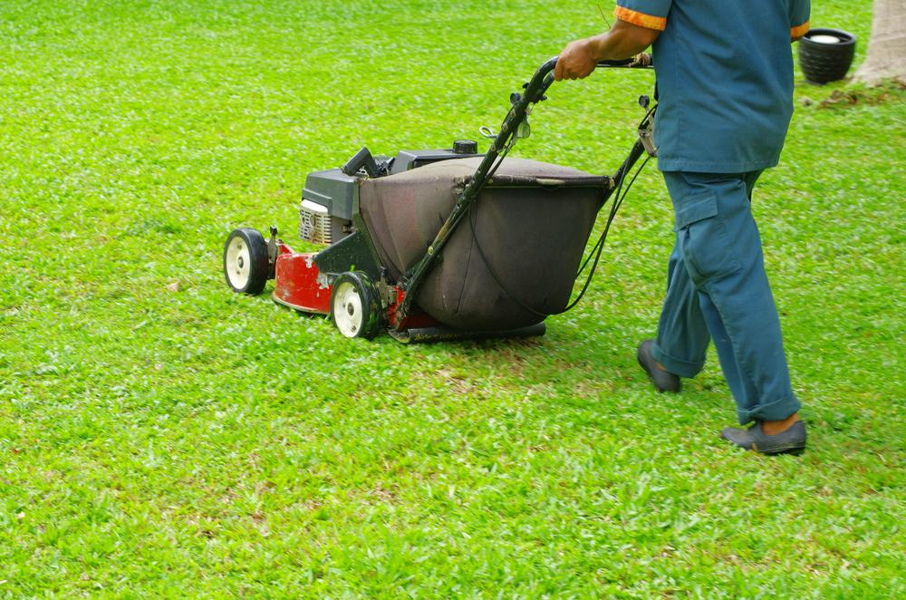 Lawn Care Mowing