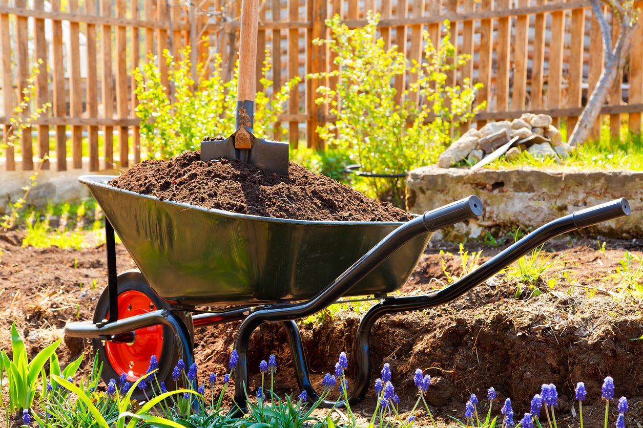 Maintenance Lawn Care