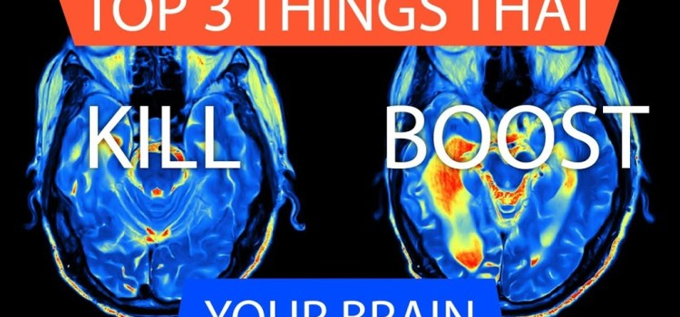 What Boosts / Shrinks Your Brain?