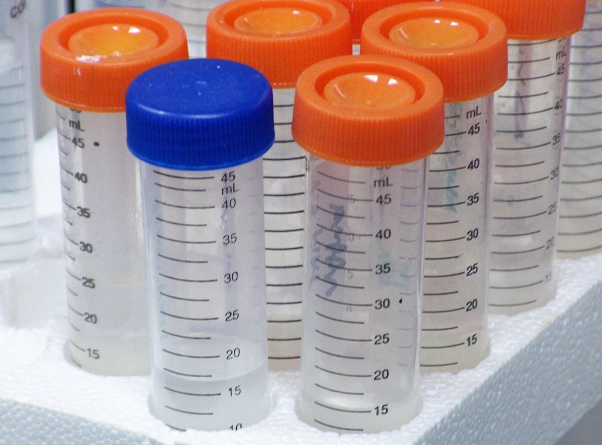 Maxilabor usa franquias para expandir rede de laboratórios de análises toxicológicas
