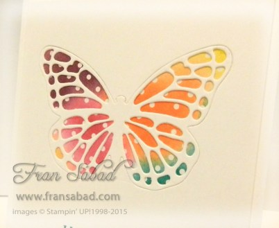 Butterfly Basics 05 detail
