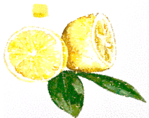 lemons adapted franscienceart