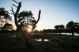 Imagemaker, location scout, Team_Mapito_Wetlands_MoodsNLD-108