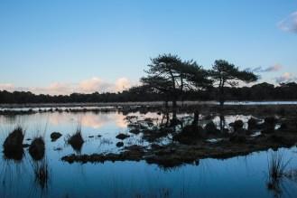 Imagemaker, location scout, Team_Mapito_Wetlands_MoodsNLD-90