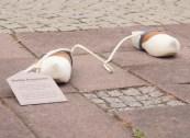 Impressionen Kunstprojekt Bückeburg-9