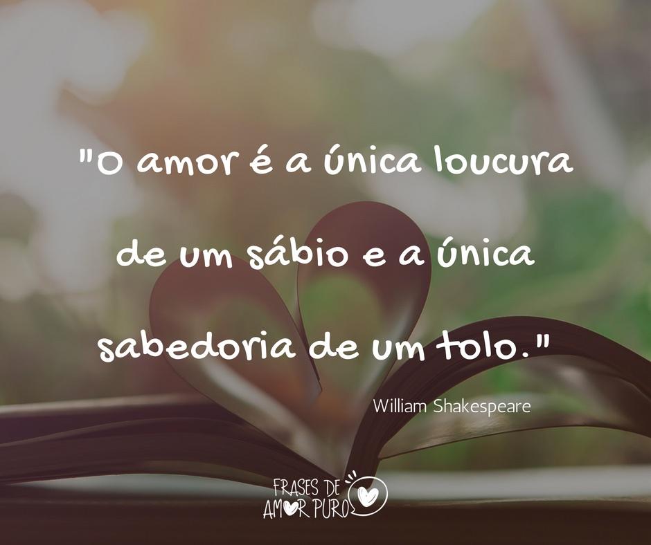 O Amor é A única Loucura Frases De Amor Puro