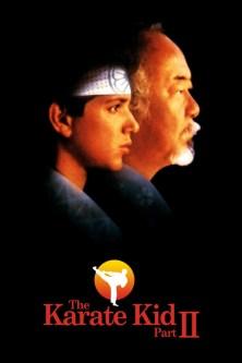 El Karate Kid Parte II