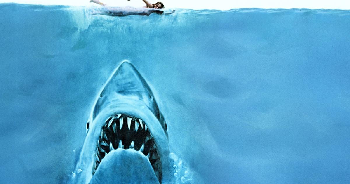 Frases de la película Tiburón
