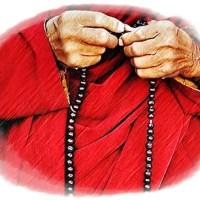 Verbo & Oración