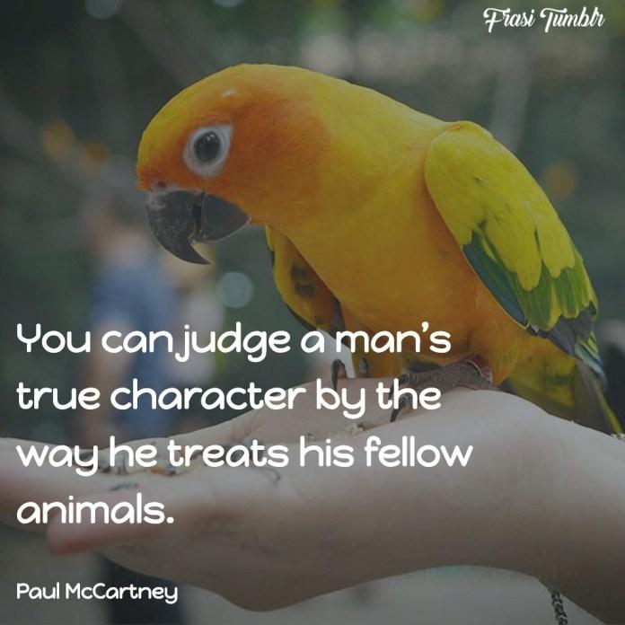 frasi-animali-inglese-giudicare-uomo-animali