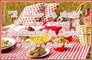 contestcestino-picnic