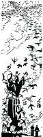 St François et oiseaux