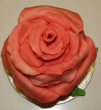Rosentorte - Blüte und Blätter