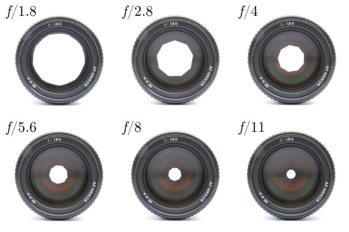 Objektiv Kamera für die Foodfotografie, welche Kamera für Backfotos