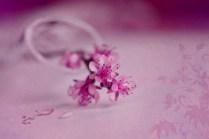 springbloom