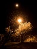 Mond und Laterne - Abendlicht
