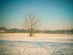 Winterland um die Ecke
