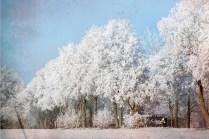 Winter - Texturarbeit Frau Doktor