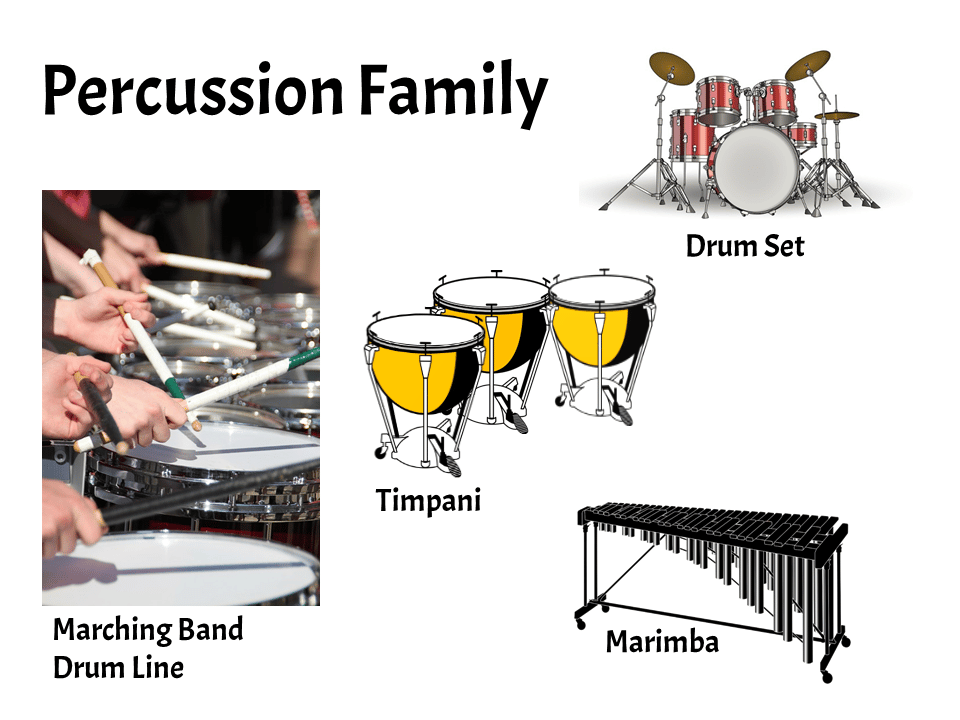 Percussion | FREE Lesson - Learn About the Instruments of the Orchestra and Band | Elementary Music Classroom