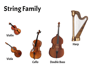 Instruments of the String Family