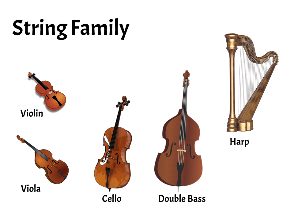 String Family | FREE Lesson - Learn About the Instruments of the Orchestra and Band | Elementary Music Classroom