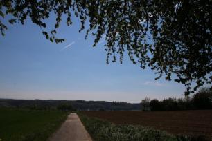 Baumwandelweg 8