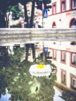 Überlingen_die wunderschöne Stadt am Bodensee11