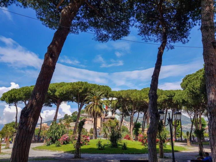 Die gefällten Kieferbäume im Giardini Pubblici Park Ventimiglia