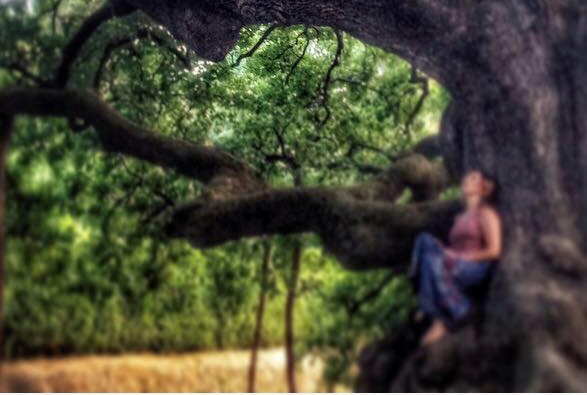 meditazione alla quercia delle streghe: mindfulness in natura nelle viandanze