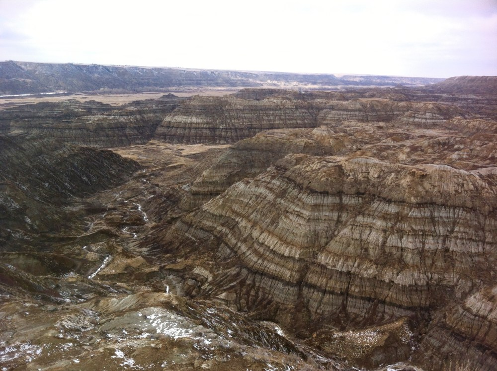 Overlooking Horsethief Canyon, near Drumheller, Alberta. Fossil country!