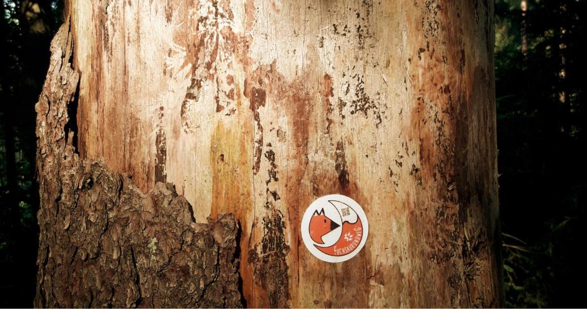Baumstamm mit Wegmarkierung