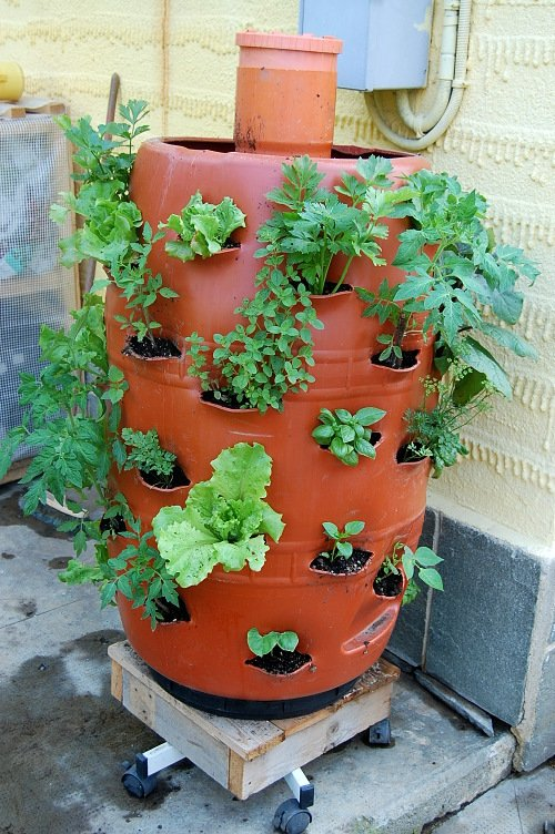 Vertical Garden Barrel