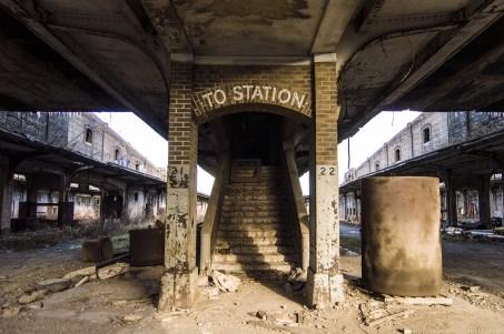 photography prints of Abandoned Buffalo