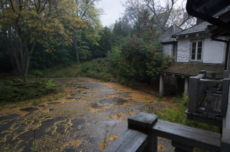The view out the window of the bedroom of a large abandoned ontario mansion, tucked away and hidden deep in a wooded area in Ontario