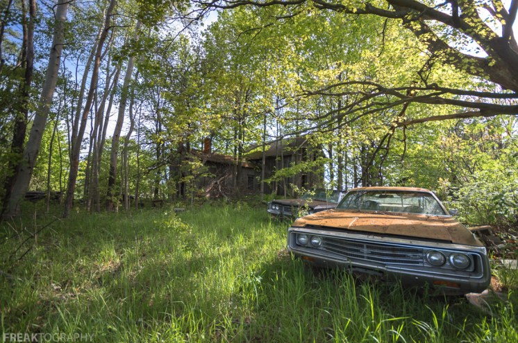 Fibonacci's Ratio, Freaktography, abandoned, abandoned cars, abandoned photography, abandoned places, cars, creepy, decay, derelict, golden ratio, grass, green, haunted, haunted places, old cars, photography, trees, urban exploration, urban exploration photography, urban explorer, urban exploring, woods