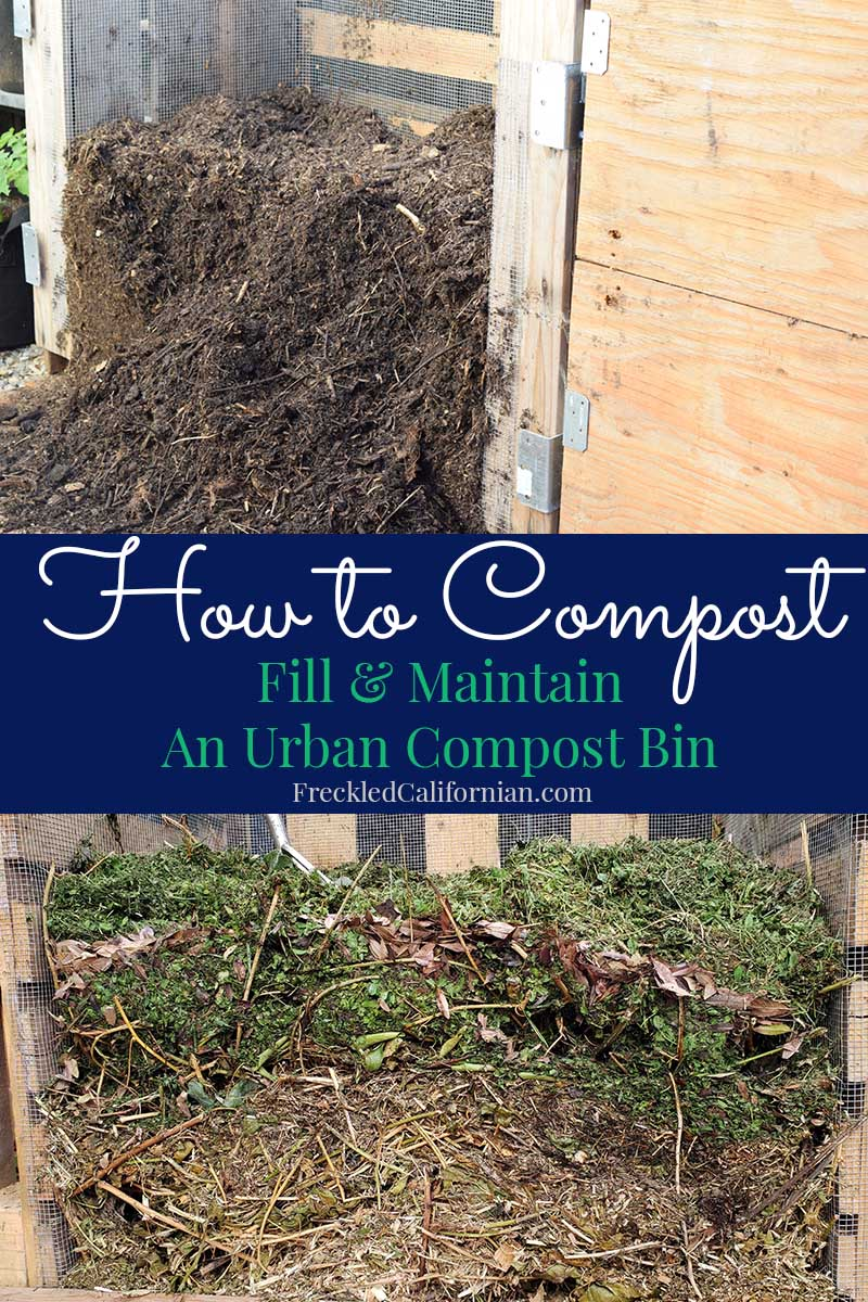 How to Compost: Filling & Maintaining a Compost Bin ...