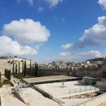 Israel2017_2017-02-13 13-37-17_012