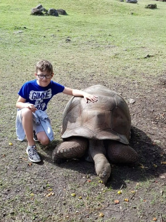 Giant Tortoise Casela Safari Park