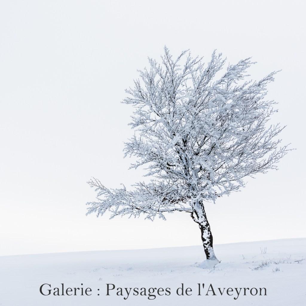 Cliquez ici pour accéder à la galerie : Paysages de l\\\'Aveyron
