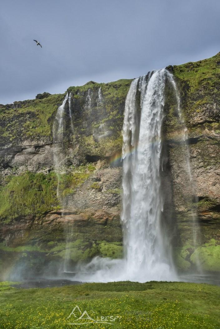 Une douche de 65m de haut (Seljalandsfoss) n°0809