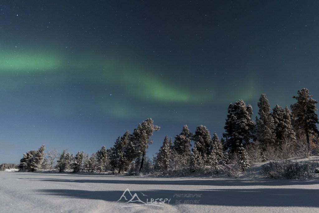 Première danse du ciel (Idivuoma - Suède) n°0901