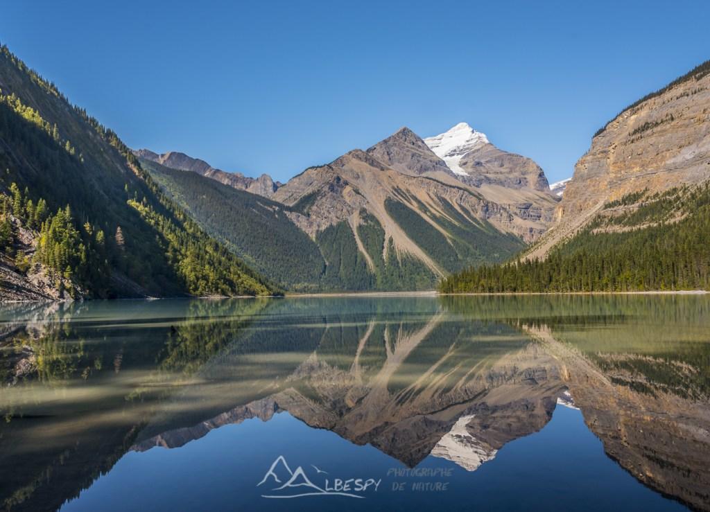 Whitehorn Mountain se reflète sur le Kinney Lake (Mount Robson Provincial Park - Colombie Britannique) n°0615
