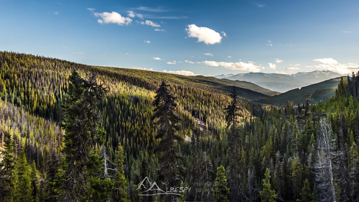 Tweedsmuir Provincial Park (Colombie Britannique) n°0621
