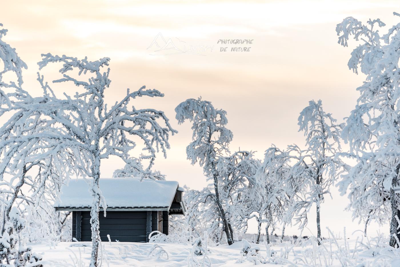 Cabane isolée (Idivuoma - Suède) n°1004