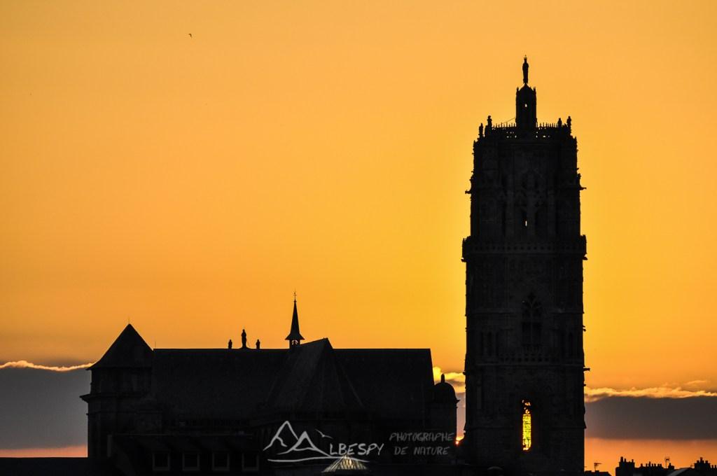 Cathédrale Notre Dame (Rodez) n°1117